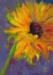 14- Sunflower