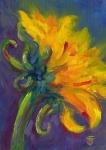 15- Sunflower