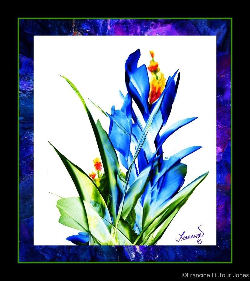 06-16-blue - 08asf
