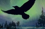 RavenNL-sign