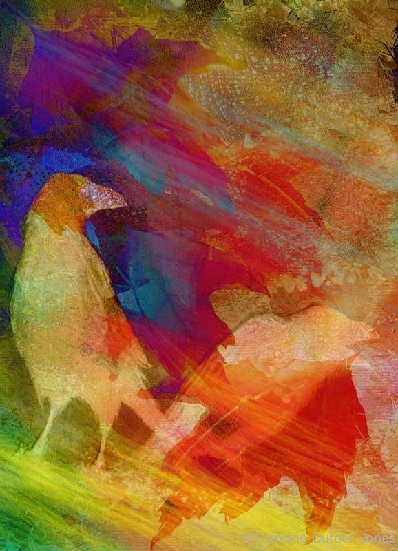 raven-collage