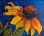 sunflower-silk-sig