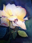 loys-rose
