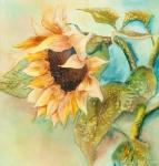sunflower-in-progress